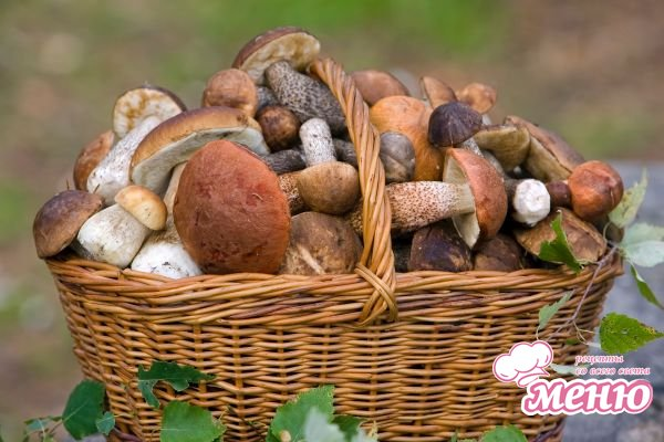 Симптомы и диагностика отравлений грибами